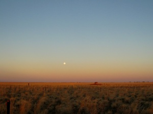 Moonrise over the Mitchell-grass plains