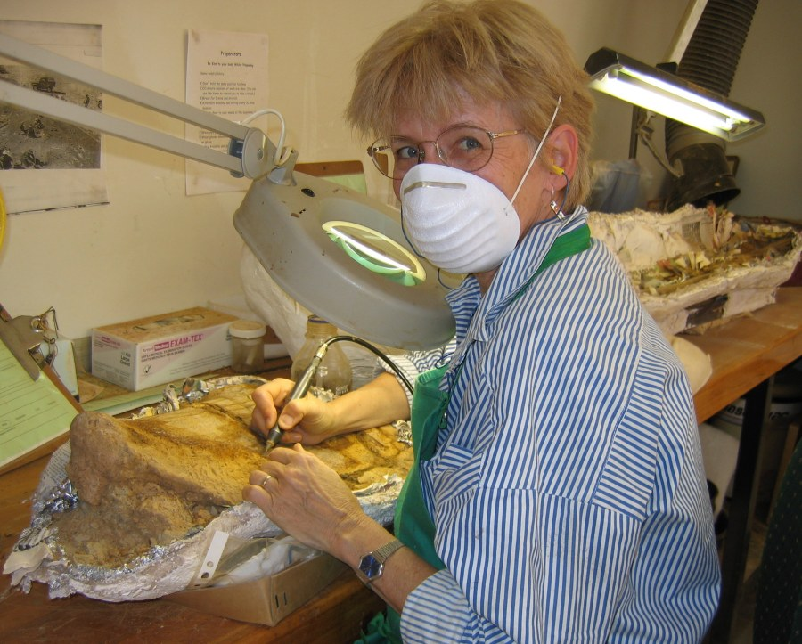 writing research in a dinosaur fossil preparation lab