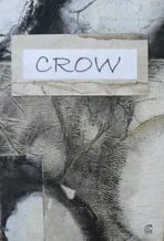 crow book cover